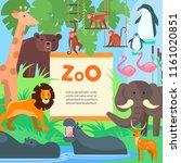 zoo animals vector flat style... | Shutterstock .eps vector #1161020851