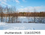winter on the river | Shutterstock . vector #116102905