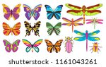 insect set of butterflies and... | Shutterstock .eps vector #1161043261