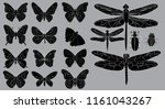 insect silhouette  icon ... | Shutterstock .eps vector #1161043267