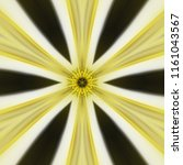 creative bright mandala....   Shutterstock . vector #1161043567