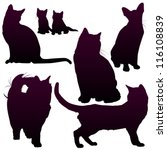Vector Silhouettes Of Cats For...