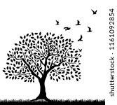 Grass  Tree And Birds  Vector...