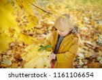 little boy during stroll in the ... | Shutterstock . vector #1161106654