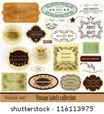 calligraphic vector | Shutterstock .eps vector #116113975