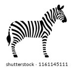Zebra In Black And White...