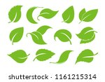 leaves icon vector set isolated ... | Shutterstock .eps vector #1161215314