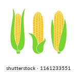 corn logo. isolated corn on... | Shutterstock .eps vector #1161233551