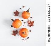 autumn composition. pumpkins ... | Shutterstock . vector #1161331297
