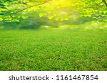 nature spring grass background... | Shutterstock . vector #1161467854
