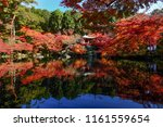 autumn trees with the pond at... | Shutterstock . vector #1161559654