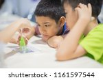 students in the science class... | Shutterstock . vector #1161597544