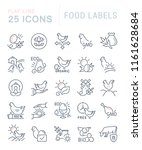 set of vector line icons of... | Shutterstock .eps vector #1161628684
