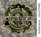 aspiration camo emblem | Shutterstock .eps vector #1161675481