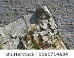germany bielefeld august 10 ... | Shutterstock . vector #1161714634