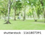 blurred of green trees lawn... | Shutterstock . vector #1161807391