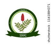 sumac. plant. inflorescence ... | Shutterstock .eps vector #1161884371
