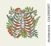 floral vintage rib cage... | Shutterstock . vector #1161900307