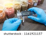measuring pet food kibble by... | Shutterstock . vector #1161921157