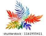 autumn bouquet of multicolored... | Shutterstock . vector #1161955411