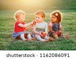 group portrait of three white... | Shutterstock . vector #1162086091