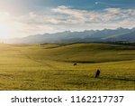xinjiang karaqin grassland ...   Shutterstock . vector #1162217737