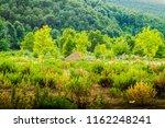 natural countryside landscape... | Shutterstock . vector #1162248241