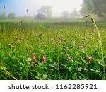 early misty summer morning. | Shutterstock . vector #1162285921