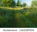 early misty summer morning. | Shutterstock . vector #1162285924