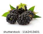 ripe blackberries with green...   Shutterstock . vector #1162413601