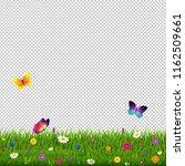 grass and flowers transparent...   Shutterstock . vector #1162509661