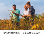 group of farmers standing in a... | Shutterstock . vector #1162536124