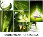 Nature Set Concepts Collage