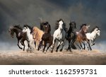 Stock photo herd of horses run forward on the sand in the dust on the sky background 1162595731