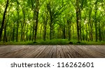 wood textured backgrounds in a... | Shutterstock . vector #116262601