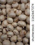 fresh champignons  lying...   Shutterstock . vector #1162667374