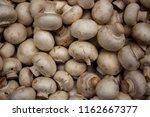 fresh champignons  lying...   Shutterstock . vector #1162667377
