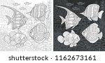 coloring page. coloring book.... | Shutterstock .eps vector #1162673161
