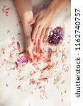 beautiful woman hands with...   Shutterstock . vector #1162740757