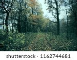 the abandoned village road... | Shutterstock . vector #1162744681