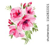 watercolor illustration of an... | Shutterstock . vector #1162822321