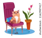 the cat sits on a chair  and... | Shutterstock .eps vector #1162987417