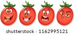 tomato. vegetable food concept. ... | Shutterstock .eps vector #1162995121