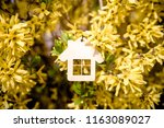 the symbol of the house among... | Shutterstock . vector #1163089027