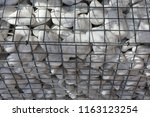 close up outdoor view of a... | Shutterstock . vector #1163123254