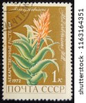 ussr   circa 1972  postage... | Shutterstock . vector #1163164351