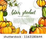 colorful pumpkin sketch hand... | Shutterstock .eps vector #1163180644