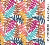 fern frond herbs  tropical... | Shutterstock .eps vector #1163191537