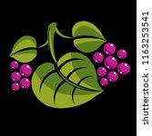 spring or summer leaf simple... | Shutterstock .eps vector #1163253541