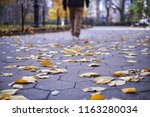 a walking man in the park which ... | Shutterstock . vector #1163280034
